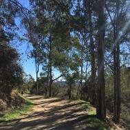 Near the trail's end
