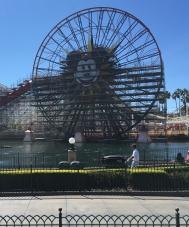 Mickey's Fun Wheel & Coaster Construction