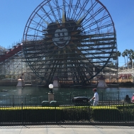 Mickey's Fun Wheel & Coaster Construction
